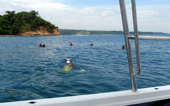 have fun at Vasco's Scuba Dive Resort offering water activities such as scuba diving, kayaking, jet skiing and more